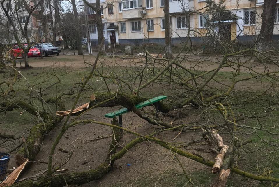 На Орджоникидзе 115 пилили авариные деревья