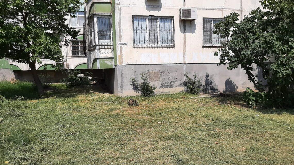 Ворошилова, 33 — покос травы