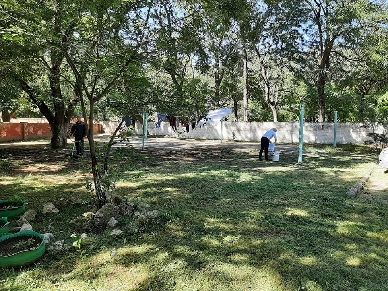 Орджоникидзе, 115 — покосили траву