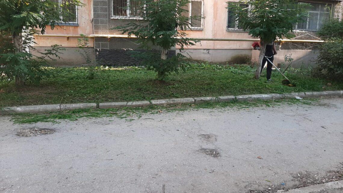 Покос травы на Льва Толстого, 132