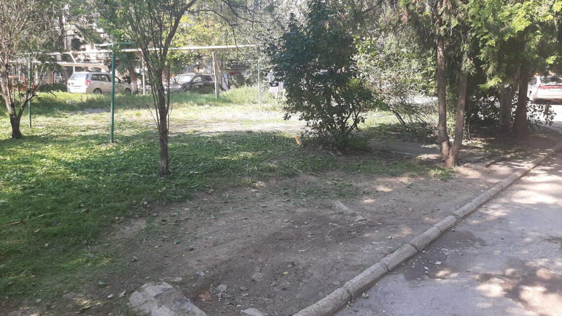 Покосили траву на Пошивальникова, 50